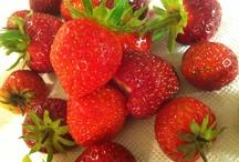 fresh / Fresh food & ingridients