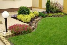 Gradini / Materiale utile despre gradini, flori, gazon, alei, mobilier tot ce iti trebuie sa ai o gradina perfecta
