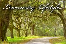 Lowcountry / Wonderful things about the lowcountry
