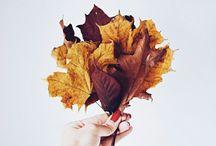 Autumn / Autumn http://bymadameem.pl