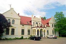 Budzistowo - Pałac