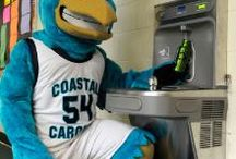 Sustain Coastal: Teal Goes Green / Learn how to live well @ CCU and maintain a sustainable lifestyle.  / by Coastal Carolina University