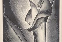 Centripeδia