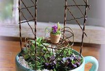 záhradka v pohári