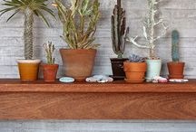 Plant it / Indoor and Outdoor Plantspiration