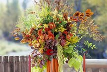 Fall Decor & Tablescapes / Home decor / by Leslie Johnson