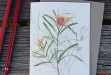 Botanical & Wildlife Art by Alison Dickin