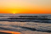 My Paradise / San Diego