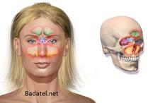 Rhinitis et sinusitis