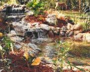 Pond Questions Answered / Frequently Asked Questions about Ponds answered by Nature Coast Aquascape serving in Tampa Bay Area and Floral City, Florida (FL) 727-258-4114 Tampa Bay Area  ~ 352-637-9004 Floral City