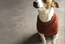 Knitting animal coats