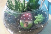 my succulent terarium