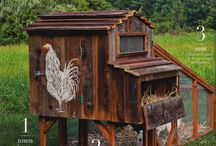 Erika's chicken coop