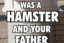 Your Mother Was A Hamster / Monty Python friends. / by Stephani Carter