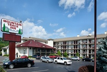 Pigeon Forge Hotels & Motels / by Pigeon Forge Dept. of Tourism