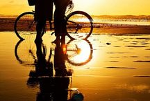 The bicycle is a curious vehicle. Its passenger is its engine. / by Celia Urquhart