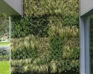 Inspiration green walls / vertical gardens