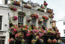 London restaurants done