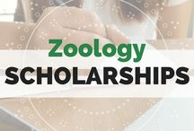 Scholarships By Majors / #Scholarships by academic majors! Conveniently displayed in alphabetical order for you!