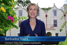 Barbados Reviews: What Visitors Say / Of course we love Barbados and all that it has to offer. And we admit we're a little biased about our amazing Caribbean island :)    So don't just take our word for it, have a look at what visitors have to say...