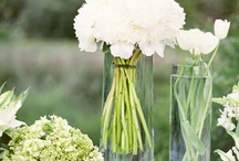 Flower ideas / by Marybeth McGuire