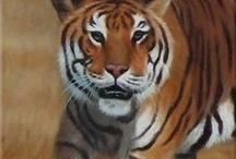 Gedetailleerde tijger / Gedetailleerd