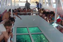 Glass Bottom Boat Sharm El Sheikh Excursions