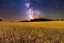 звезды,небо