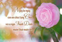 Chúc tụng Thiên Chúa