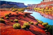 Art - Artist Jonathan Frank / by Donna Binkley