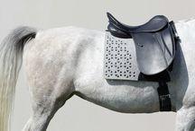 Equine Devine