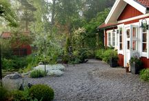 Garden Styles: Scandinavian Wild / Gardening in the way north (or south) can be hard with such sort growing seasons.  Make the most of it with swedish inspired design and hyper hardy growing choices.  / by Rochelle Walter Greayer