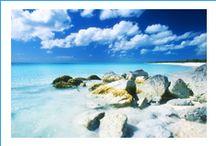 www.andamantourismonline.com