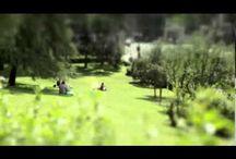"""1º concurso de vídeo / Los vídeos ganadores y finalistas de nuestro Primer Concurso de Vídeo """"Madrileños por su barrio""""."""