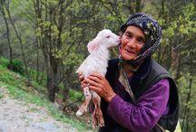 #Bursa İznik'te 66 yaşındaki İlknur Karaboğa ile yavru keçinin mutluluğu objektife yansıdı. / #Bursa İznik'te 66 yaşındaki İlknur Karaboğa ile yavru keçinin mutluluğu objektife yansıdı. İlknur Teyze yalnızca yemenisine sardığı oğlağı değil, fotoğrafları görenlerin de içini ısıtıyor. (Fotoğraf: Emre Karaboğa)