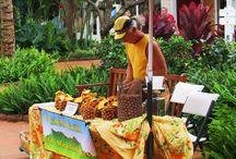 Bucket List: Hawaii