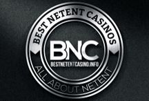 BestNetentCasino.info (Turkish)