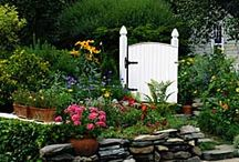 A Good Read / Landscaping Articles and Advice! / by Dreamscape: Yard Product