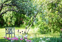 puutarhan kevät
