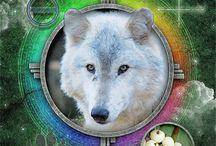 Tarot Foresight / Great decks for tarot reading.