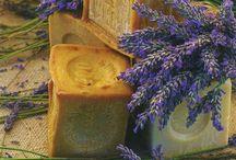 Provence GS