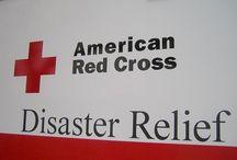 Disaster Preparedness / by Alli Fielder