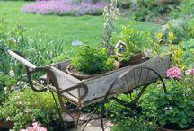 Gardening / by Nisha Umbarger