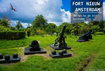 Fort Nieuw Amsterdam Suriname / If you're a history geek, Fort Nieuw Amsterdam in Suriname is the place to be.