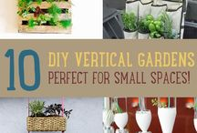 Vertical Gardening / It is an excellent way to grow your own food without using up a lot of space.