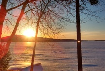 Cozy Moose Lakeside Cabin Rentals / Moosehead Lake Vacation Rentals
