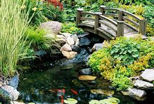 Outdoor water features / Outdoor ponds and fountains