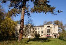 pałac skrzyńskich