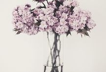 Flowers / Flowers, Styling with Fresh Flowers