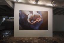 56th International Art Exhibition, la Biennale di Venezia 2